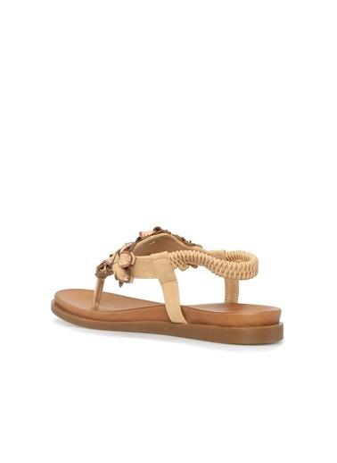 Divarese Divarese 5023060 Troklu Kadın Sandalet Taba